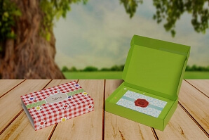 EkoBox picknick