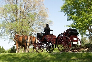 Romantisk picnic på Djurgården med häst och vagn