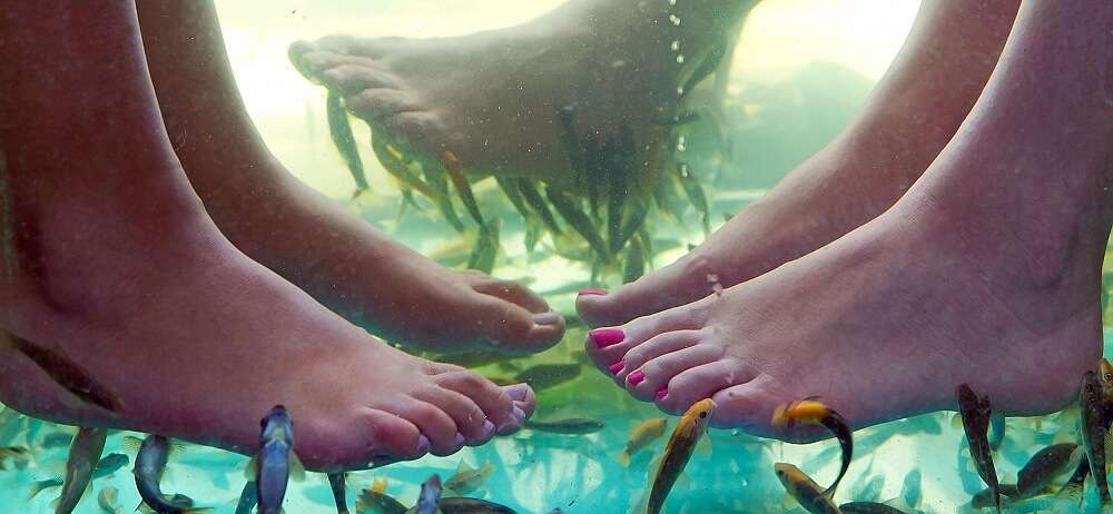 Fiskpedikyr - Fina fötter på ett naturligt sätt
