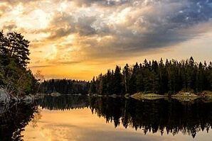 Naturfoto morgon