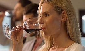 Vinprovning Amarone Ripasso